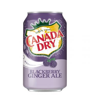 Canada Dry Blackberry Ginger Ale - 12fl.oz (355ml) Soda and Drinks Canada Dry